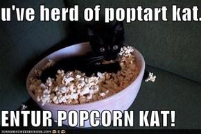 u've herd of poptart kat...  ENTUR POPCORN KAT!