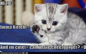 HI'z! (= Imma Kitteh(= And im cute(= can i have cheezburger? =D