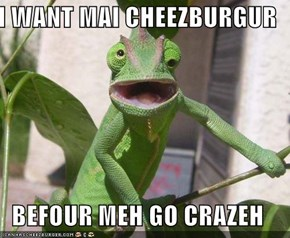 I WANT MAI CHEEZBURGUR  BEFOUR MEH GO CRAZEH