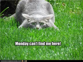 Monday can't find me here!