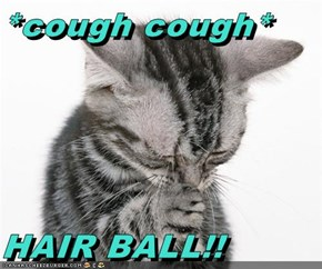*cough cough*  HAIR BALL!!