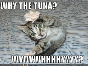 WHY THE TUNA?  WWWWHHHHYYYY?