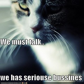 We must talk.. we has seriouse bussines