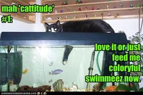 mah 'cattitude' #1: