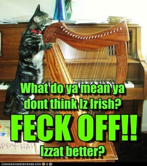 What do ya mean ya dont think Iz Irish?   Izzat better?