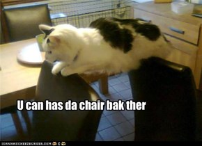 U can has da chair bak ther