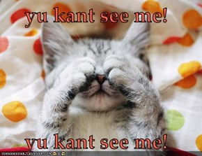 yu kant see me!  yu kant see me!