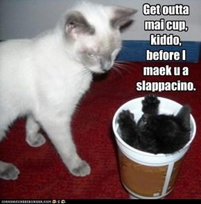 Get outta mai cup,