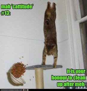 mah 'cattitude' #13: