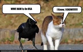 Pissin' Off Da CAT