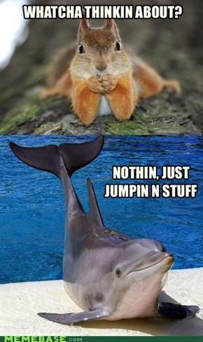 Oh, Just Mammal Stuff