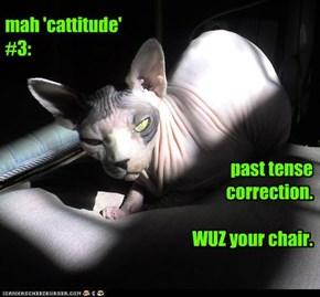mah 'cattitude' #3: