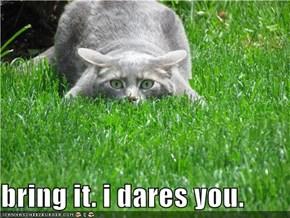 bring it. i dares you.