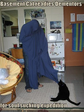 Basement Cat readies Dementors  for soul sucking expedition