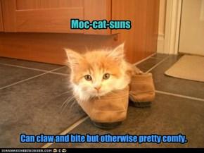 Moc-cat-suns