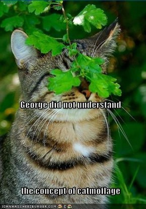George did not understand the concept of catmoflage