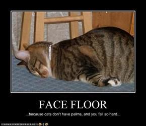 FACE FLOOR