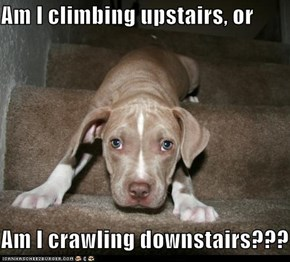 Am I climbing upstairs, or  Am I crawling downstairs???