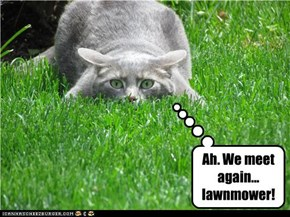 Ah. We meet again... lawnmower!