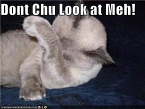 Dont Chu Look at Meh!