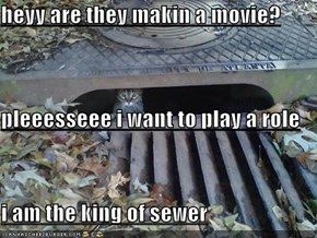 heyy are they makin a movie? pleeesseee i want to play a role i am the king of sewer