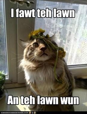 I fawt teh lawn
