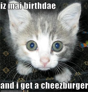 iz mai birthdae  and i get a cheezburger