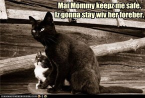 Mai Mommy keepz me safe.  Iz gonna stay wiv her foreber.