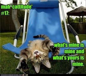 mah 'cattitude' #17: