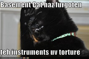 Basement Cat haz furgoten  teh instruments uv torture