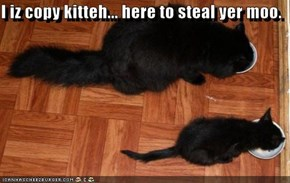 I iz copy kitteh... here to steal yer moo.