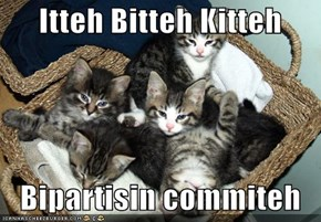 Itteh Bitteh Kitteh     Bipartisin commiteh