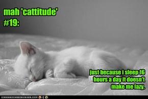 mah 'cattitude' #19: