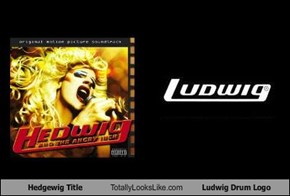 Hedgewig Title Totally Looks Like Ludwig Drum Logo