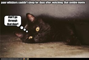 poor whiskers couldn't sleep for  days after  watching  that zombie movie