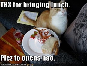 THX for bringing lunch.  Plez to opens nao.