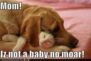 Mom!  Iz not a baby no moar!