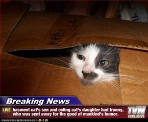 Breaking News - basment cat's son and celing cat's daughter had franny, who was sent away for the good of mankind's humor.
