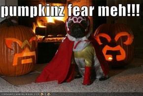 pumpkinz fear meh!!!