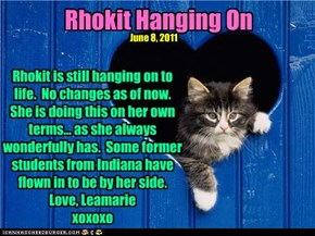 Rhokit Hanging On