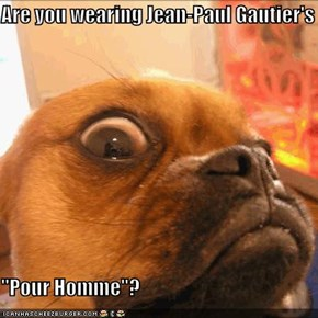 "Are you wearing Jean-Paul Gautier's   ""Pour Homme""?"