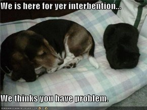 We is here for yer interbention...  We thinks you have problem.