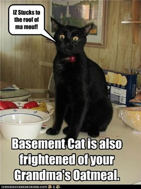 Basement Cat is also frightened of your Grandma's Oatmeal.