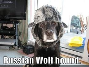 Russian Wolf hound.