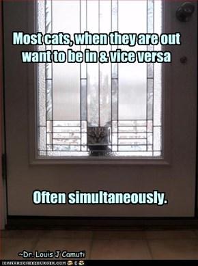 2 words: Cat Door