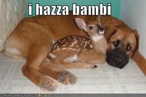 i hazza bambi