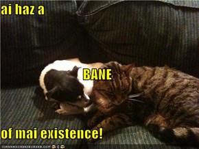 ai haz a BANE of mai existence!