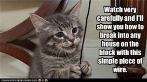 Cat Burglary 101