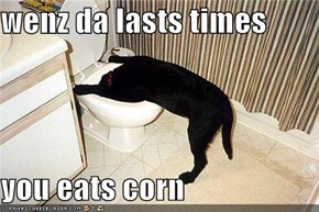 wenz da lasts times  you eats corn