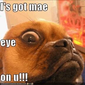 I's got mae eye on u!!!